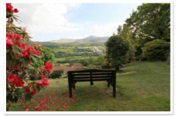 Dwy Olwyn Garden Bench and Views