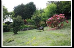 Dwy Olwyn Garden